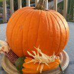 All Things Pumpkin