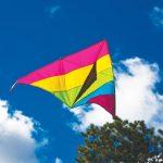Kites Keep Us Looking Up!