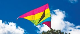 Kites Keep Us Looking Up!