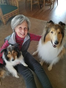 Pet therapy from my friend Beth's collie, Maisie, and her fur friend Duchess.